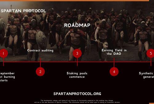 Protocolul Spartan - configurare si informatii suplimentare